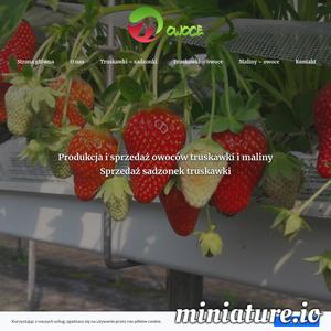 Jesteśmy przedstawicielem sprzedaży włoskiej firmy Mazzoni. Szkółka ta oferuje Państwu najwyższej jakości sadzonki truskawek. Wszystkie rośliny posiadają certyfikat jakości. W ofercie wiele bardzo interesujących odmian. Dostępne są sadzonki typu frigo, na specjalne zamówienie również sadzonki typu mini tray i tray.