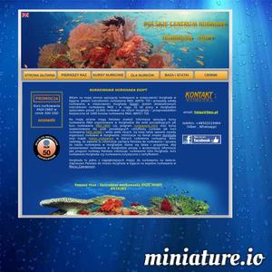 Nurkowanie w mieście Hurghada od kilku lat staje się coraz częściej popularne w Europie. Nurkowanie głębinowe gwarantuje wiele przyjemności, a dzięki niemu jesteśmy w stanie obserwować podwodny świat raf koralowych. W Europie nie ma zbyt dużo punktów, aby zanurkować. Jednym z wspaniałych miejsc do nurkowania na świecie jest Hurghada w Egipcie oraz rafy koralowe Morza Czerwonego. Co roku wielu nurków przylatuje do miasta Hurghada w Egipcie, aby ukończyć kurs nurkowania PADI. Hurghada oferuje ciepłe Morze Czerwone z cudownymi rafami koralowymi jakich nie zobaczysz nigdzie indziej. Hurghada w Egipcie, dzięki swojemu położeniu wśród około 50 raf koralowych jest jednym z najwspanialszych miejsc do nurkowania na świecie. Znaczne zasolenie Morza Czerwonego sprawia, że widoczność pod powierzchnią wody dochodzi do 40 m. W Hurghadzie jest aż 200 baz nurkowych. Nurkowanie z akwalungiem jest sportem nader bezpieczne pod warunkiem respektowania zasad bezpieczeństwa. Przy wyborze centrum nurkowego w